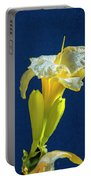 Yellow Glue Blue #f9 Portable Battery Charger