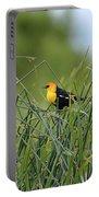 Yellow-headed Blackbird Portable Battery Charger