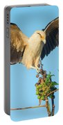Yellow-headed Caracara Milvago Portable Battery Charger