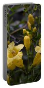 Yellow Jessamine With Raindrops Portable Battery Charger
