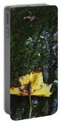 Yellow Leaf On Mossy Tree Portable Battery Charger