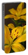 Yellow Lily Mirror Portable Battery Charger