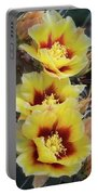 Yellow Long- Spined Prickly Pear Cactus  Portable Battery Charger