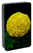 Yellow Marigold Flower On Black Background Portable Battery Charger