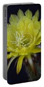Yellow Night Blooming Cactus  Portable Battery Charger