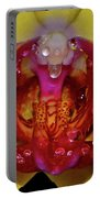 Yellow Phalaenopsis Centerpiece - Orchid And Raindrops 003 Portable Battery Charger