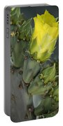 Yellow Prickly Pear Cactus Bloom Portable Battery Charger