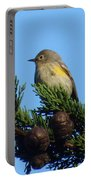Yellow-rumped Warbler On Cedar Bough Portable Battery Charger
