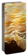 Yellow Sea Anemones Macro Portable Battery Charger