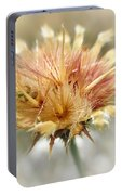 Yellow Star Thistle Portable Battery Charger by Valerie Anne Kelly