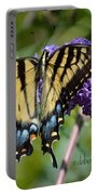 Yellow Swallowtail Butterfly Two Portable Battery Charger