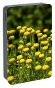 Yellow Tansy Portable Battery Charger
