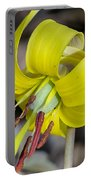 Yellow Trout Lily Portable Battery Charger