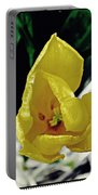 Yellow Tulip Floating In Air Portable Battery Charger