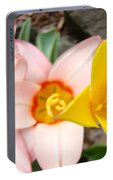 Yellow Tulips Art Prints Pink Tulips Spring Florals Baslee Troutman Portable Battery Charger