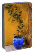 Yellow Wall, Blue Pot Portable Battery Charger