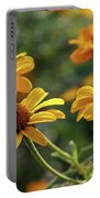 Yellow Wildflowers 3680 H_2 Portable Battery Charger