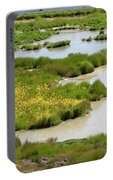 Yellow Wildflowers At Mud Volcano Area In Yellowstone National Park Portable Battery Charger