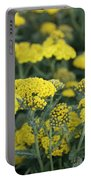 Yellow Yarrow Portable Battery Charger