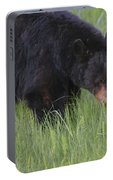 Yellowstone Black Bear Grazing Portable Battery Charger