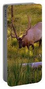 Yellowstone Bull Portable Battery Charger