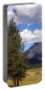 Yellowstone Landscape Portable Battery Charger