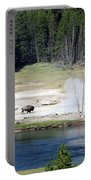 Yellowstone Park Bison In August Portable Battery Charger