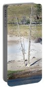 Yellowstone Park Bisons In August Portable Battery Charger