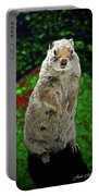 Yellowstone Pica Portable Battery Charger