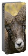 Yellowstone Ram Portable Battery Charger