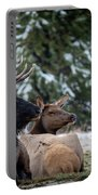 Yellowstone Wild Portable Battery Charger