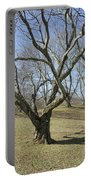 Yellowwood Tree In Winter Portable Battery Charger