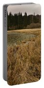 Yew Tree Tarn Portable Battery Charger