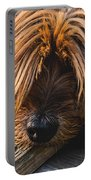 Yorkshire Terrier Biting Wood Portable Battery Charger