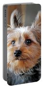 Yorkshire Terrier Dog Pose #3 Portable Battery Charger