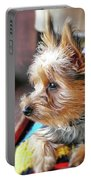 Yorkshire Terrier Dog Pose #8 Portable Battery Charger