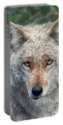 Yosemite # 4  Portable Battery Charger