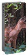 Yosemite Deer Portable Battery Charger
