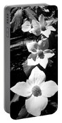 Yosemite Dogwoods Black And White Portable Battery Charger