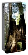 Yosemite Mighty Tunnel Tree Portable Battery Charger