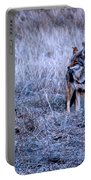 Yosemite's Coyote Portable Battery Charger