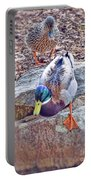 You Go First - Male And Female Mallard Ducks Portable Battery Charger