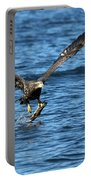 Young Bald Eagle II Portable Battery Charger