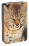 Young Bobcat 02 Portable Battery Charger