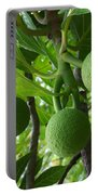 Young Breadfruit Portable Battery Charger