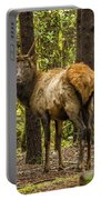 Young Bull Elk Portable Battery Charger