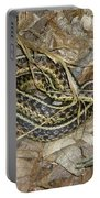 Young Eastern Garter Snake - Thamnophis Sirtalis Portable Battery Charger