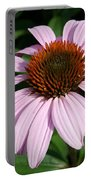 Young Echinacea Bloom Portable Battery Charger