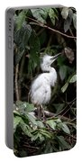 Young Egret Costa Rica Portable Battery Charger