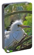 Young Great Egret Portable Battery Charger